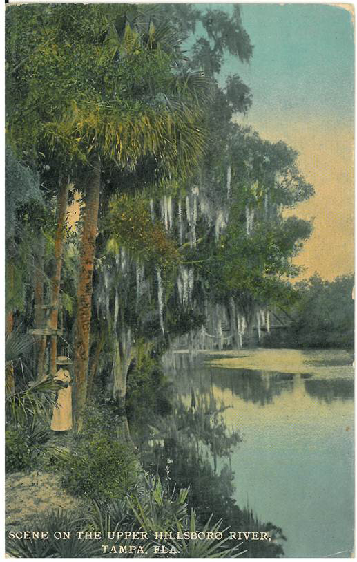Upper Hillsborough River